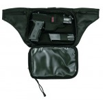 Bag for Gun